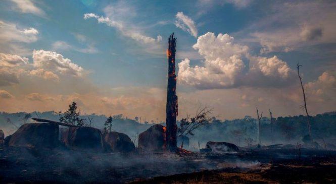 Brazil makes U-turn on £16m Amazon fire-fighting funds