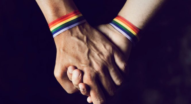 Study concludes there is no such thing as 'gay gene'