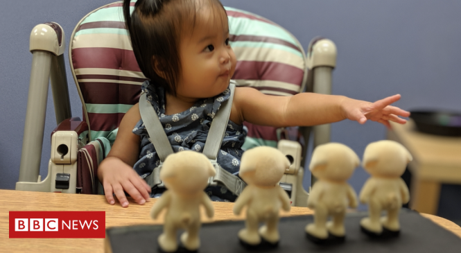 Even babies 'understand concept of counting'