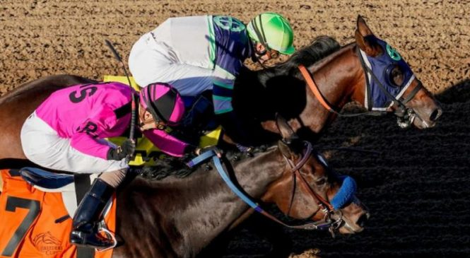 Massive upset in Juvenile headlines 1st day of Breeders' Cup races