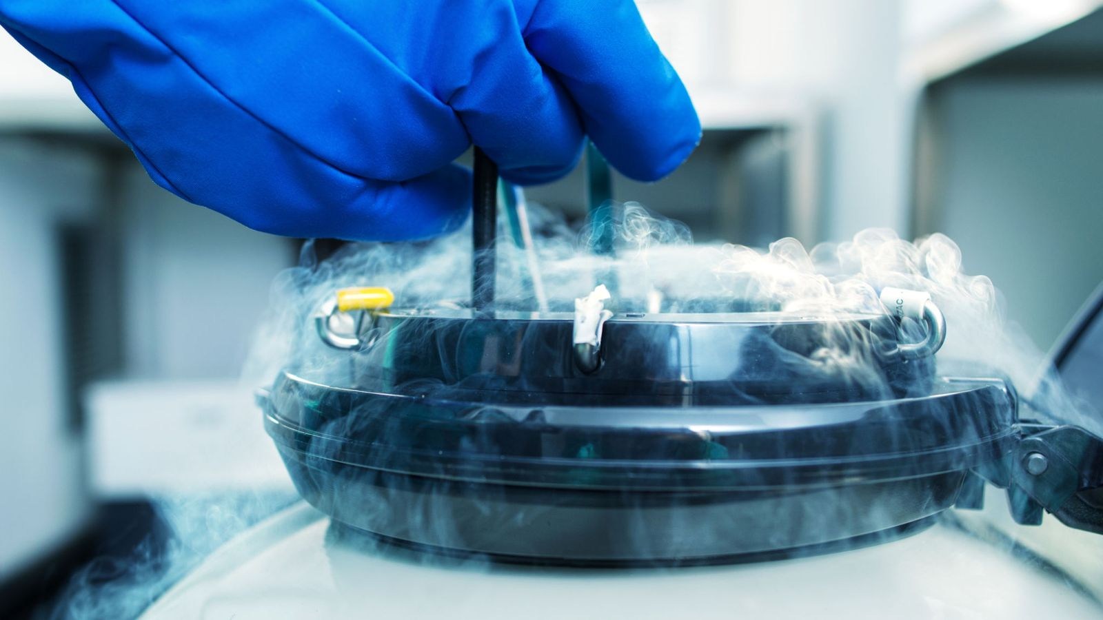 Sperm donation after death is 'morally permissible'