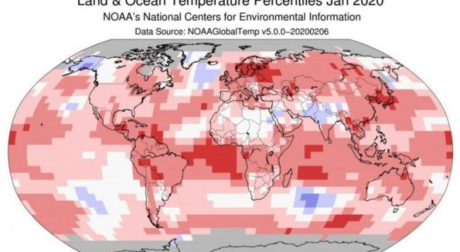 NOAA: January 2020 was hottest on record