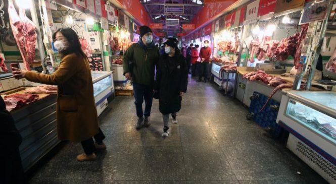 WHO coronavirus team to visit Wuhan this weekend