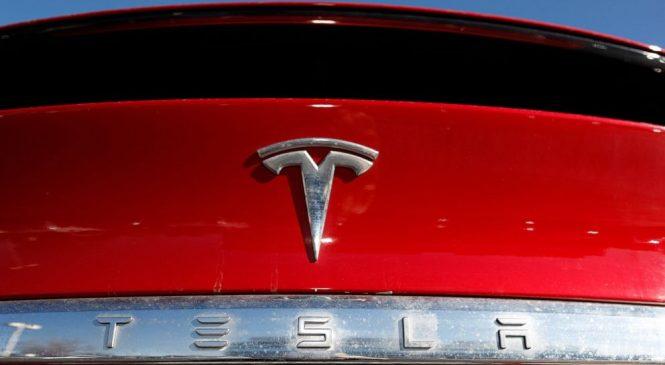 German court halts site preparation for Tesla factory
