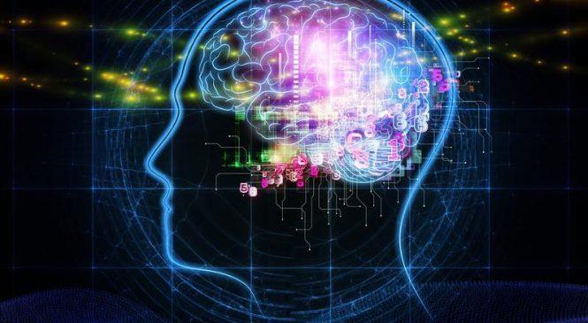 Study: Cognitive ability is a whole-brain phenomenon