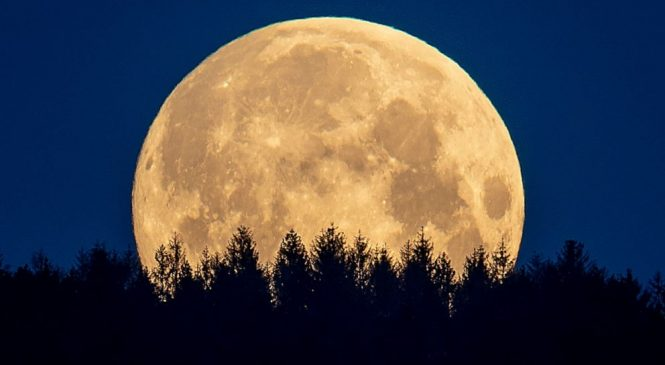 Human urine could help make concrete on Moon: Space agency