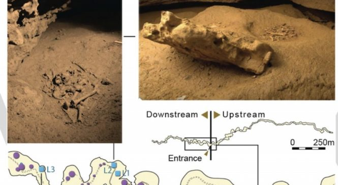 Cave remains offer new insights into Paleolithic mortuary rituals