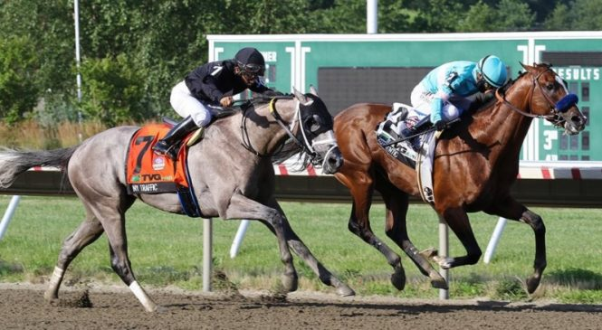 Authentic wins Haskell to keep Derby hopes alive