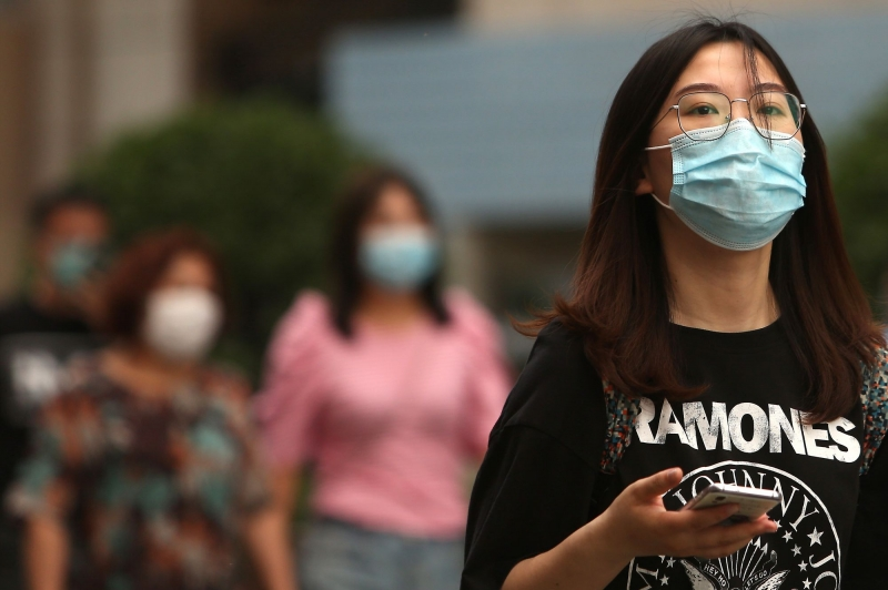 Experts pitch surveillance system to detect viruses in wildlife before next pandemic