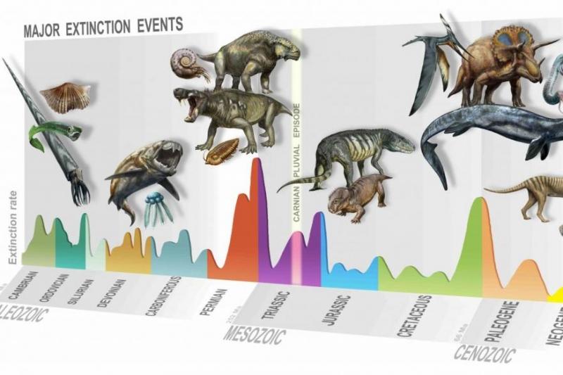 Paleontologists find evidence of new mass extinction 233 million years ago