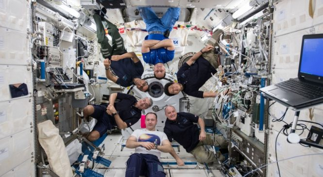 Prolonged microgravity exposure doesn't cause loss of brain tissue, study says