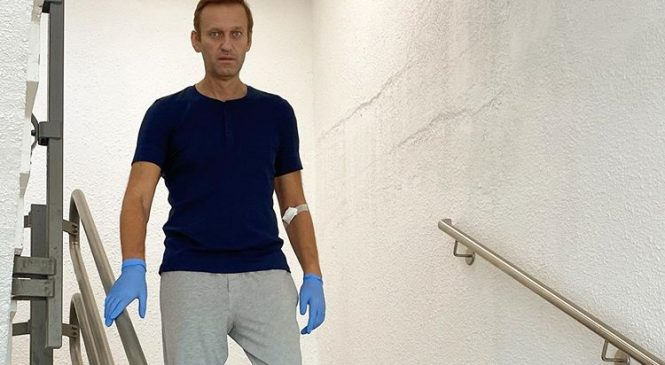 Russian activist Alexei Navalny discharged from German hospital