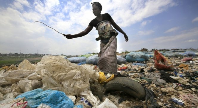 Cleanup, waste management aren't enough to save ecosystems from plastic pollution