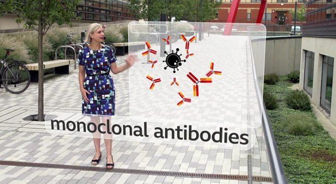 Coronavirus: Monoclonal antibodies to begin UK trial