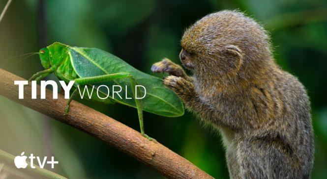 Paul Rudd to narrate 'Tiny World' nature docu-series