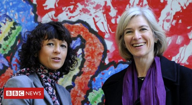Scientists win historic Nobel chemistry prize for 'genetic scissors'