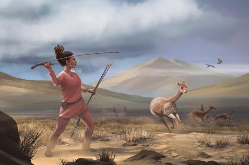 Female hunters were common in early hunter-gatherer groups in the Americas
