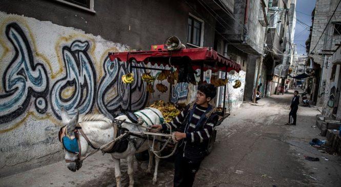UN agency: Israel's Gaza blockade has devastated economy