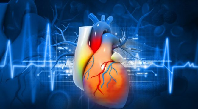 Study: Sickle cell trait does not increase heart disease risk in African Americans