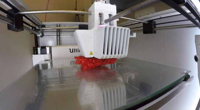 UK students create 3D-printed coral structures that could rebuild world's damaged reefs