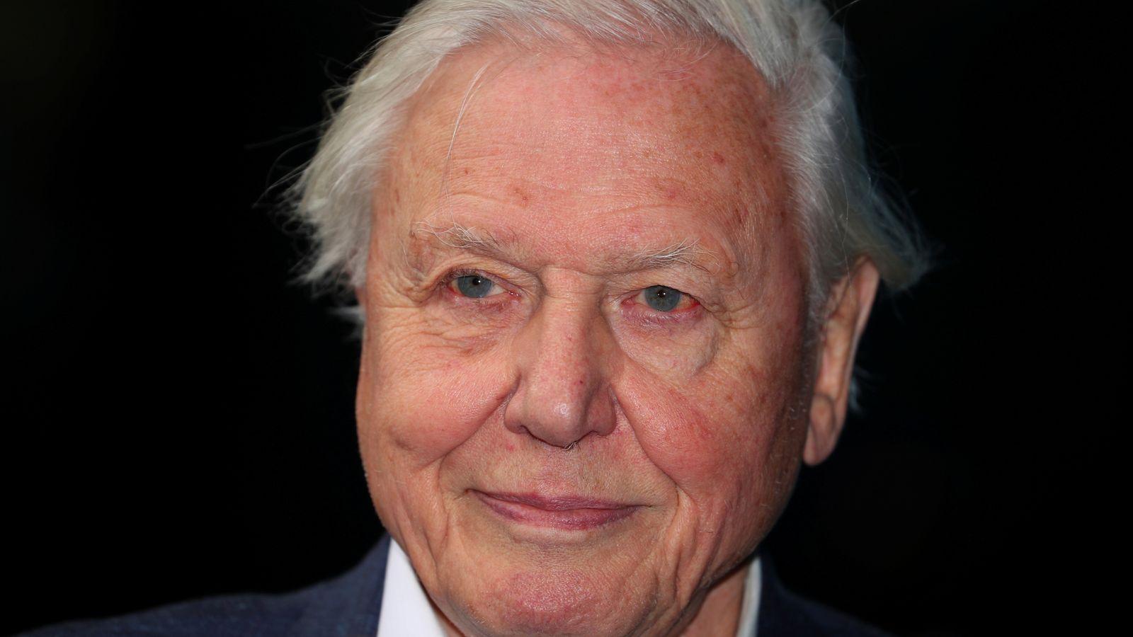 David Attenborough becomes latest celeb to get COVID-19 vaccine