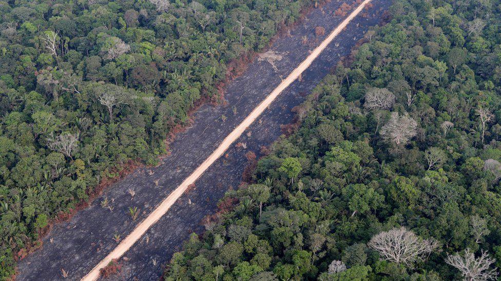 A road runs through a tract of burnt Amazon jungle near Porto Velho, Rondonia State, Brazil, 14 August 2020