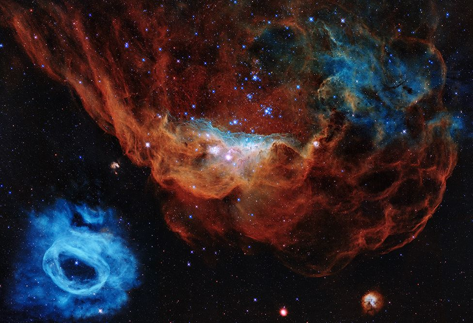 The portrait features the giant nebula NGC 2014 and its neighbour NGC 2020